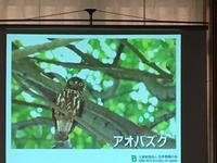 ①鳥.jpg