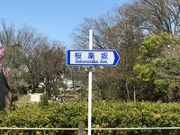 桜楽坂①.jpg
