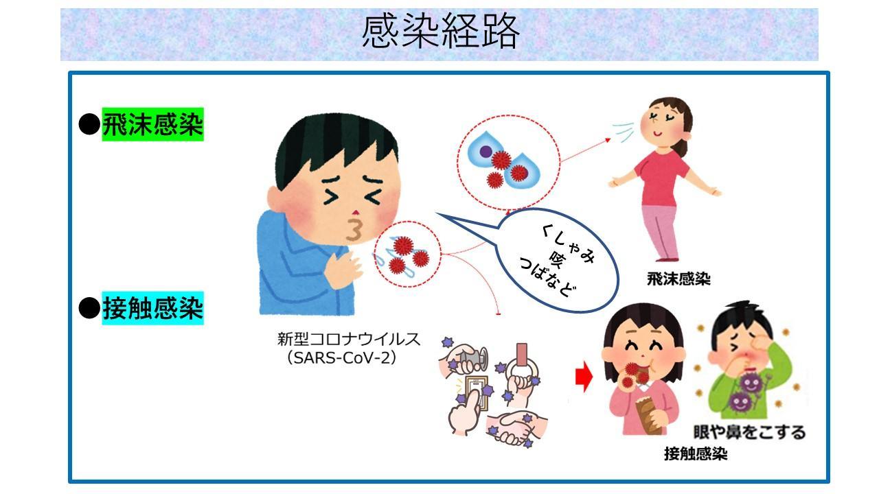 感染 経路 コロナ