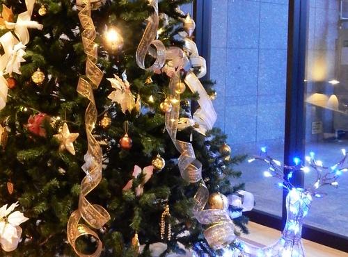B-クリスマスディナーDSCN1709-2 (3).JPG