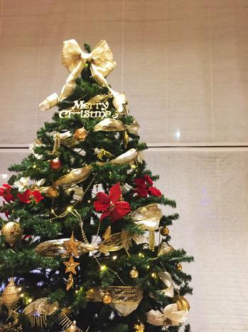 2017 クリスマスツリー.jpg