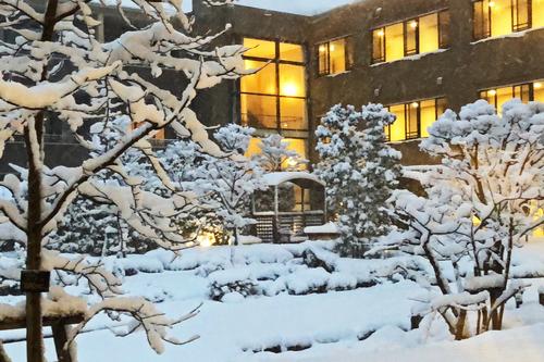 初雪②.jpeg
