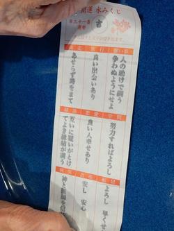 DSCN7347水みくじ2.jpg