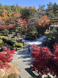 鐘山苑1.JPG