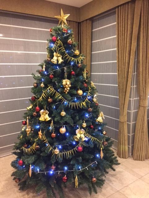 クリスマス前_1.jpg