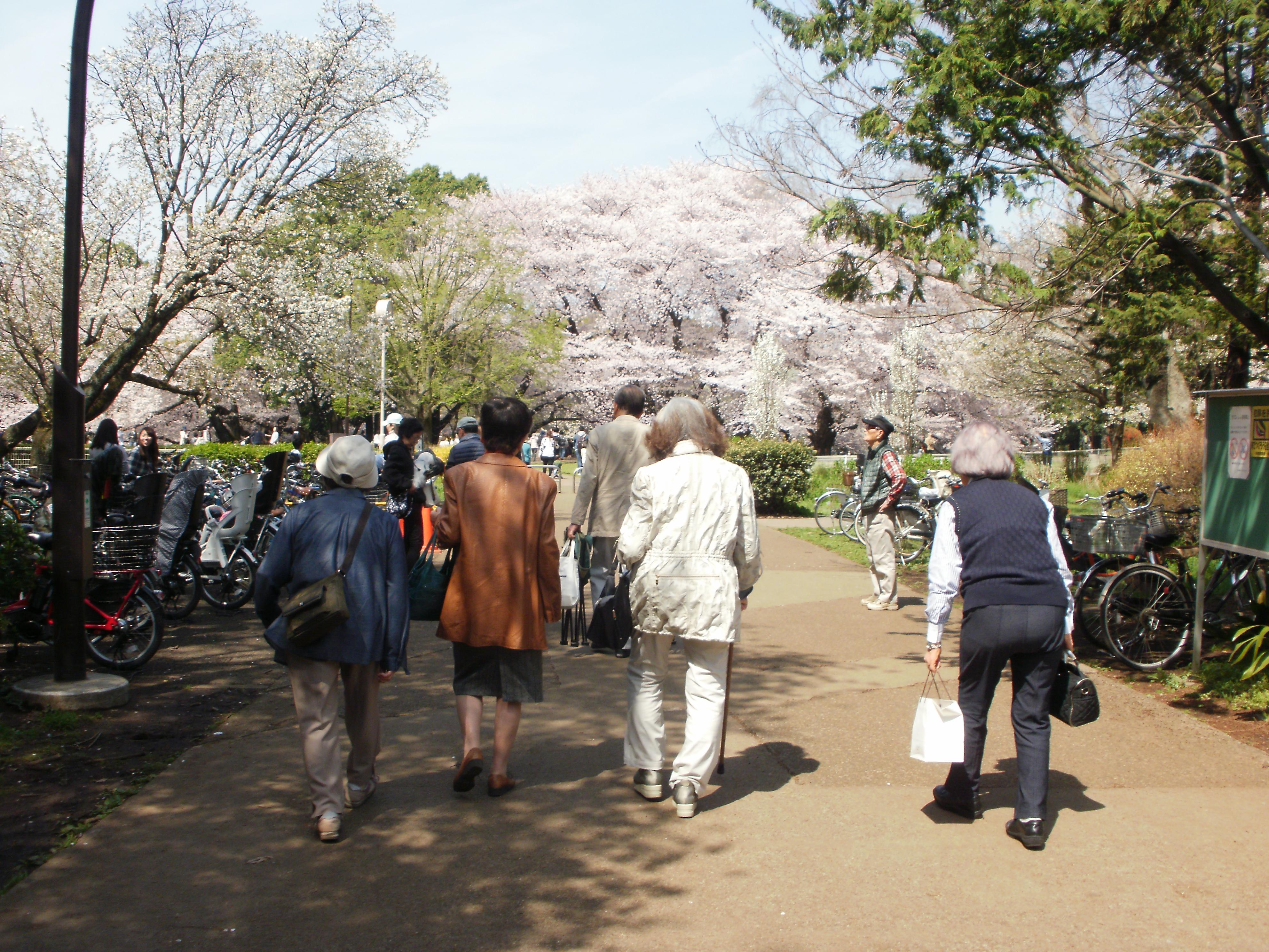 2016年お花見1.JPG